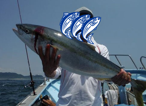 魚目隠し1